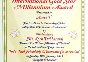 gold star millenium award